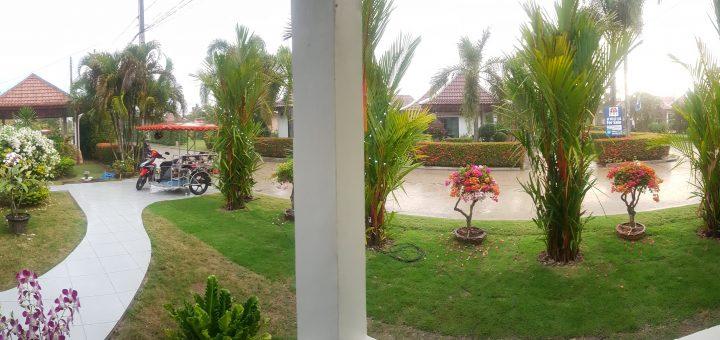 Trädgården utanför huset från altanen